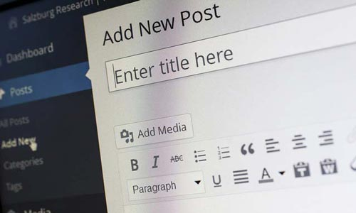 Why Need WordPress for new blogger
